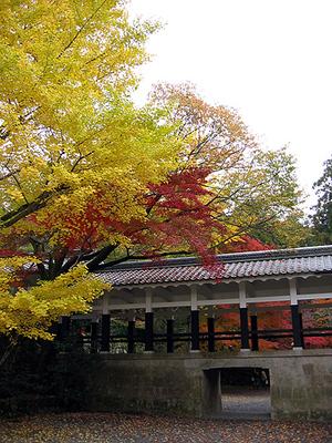 Nanzenjiaki2