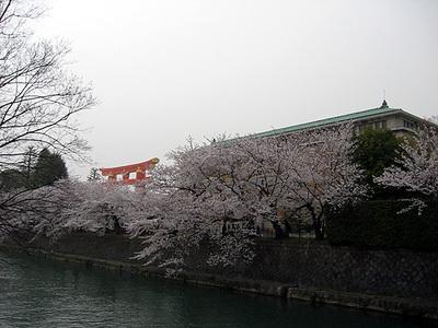 Okazakisosui1