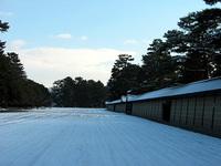 yukigosyo2