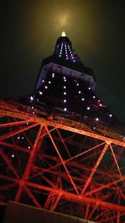 夜の東京タワー!