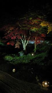 泉涌寺、夜間拝観
