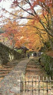 湖東三山、百済寺
