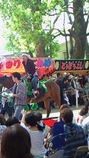 藤森神社、駈馬神事
