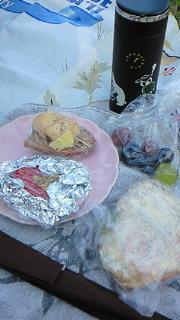 ピクニック日和