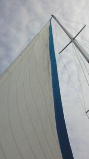 ヨットでクルージング!