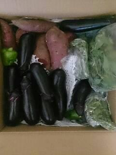 お野菜到着!!