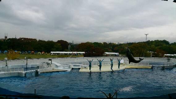 久しぶりに京都水族館