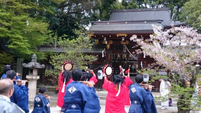 今宮神社のやすらい祭