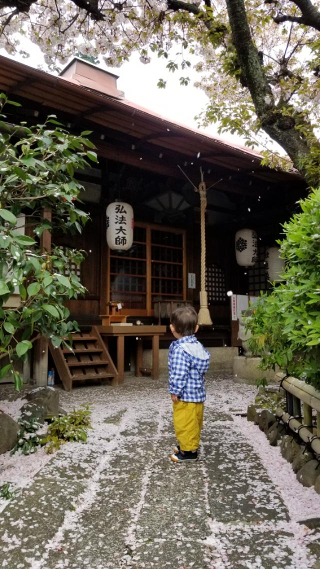雨宝院、千本ゑんま堂